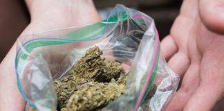 Ręce trzymające woreczek z marihuaną