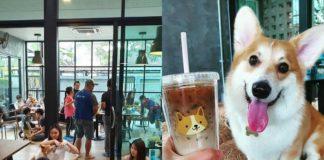 Wnętrze kawianii i piesek rasy Corgi obok kubka kawy
