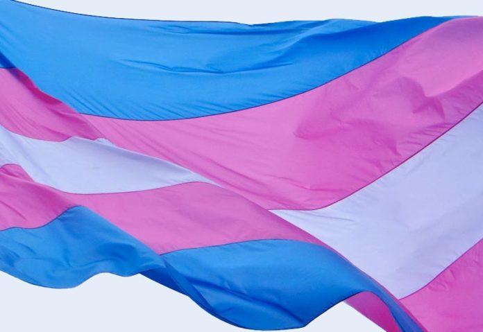 Flaga osób transpłciowych