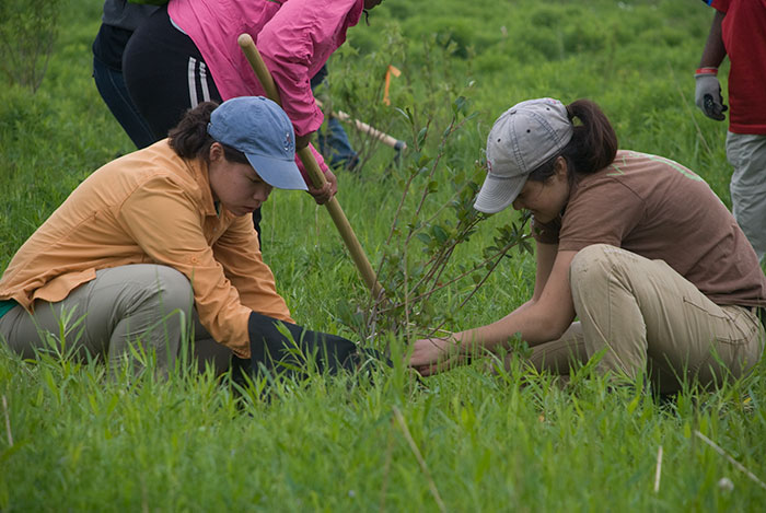Dwie dziewczyny sadzące drzewa