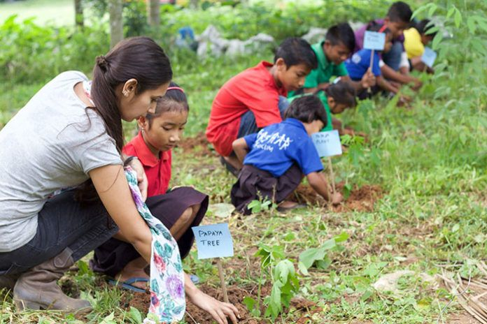 Dzieci sadzące drzewa