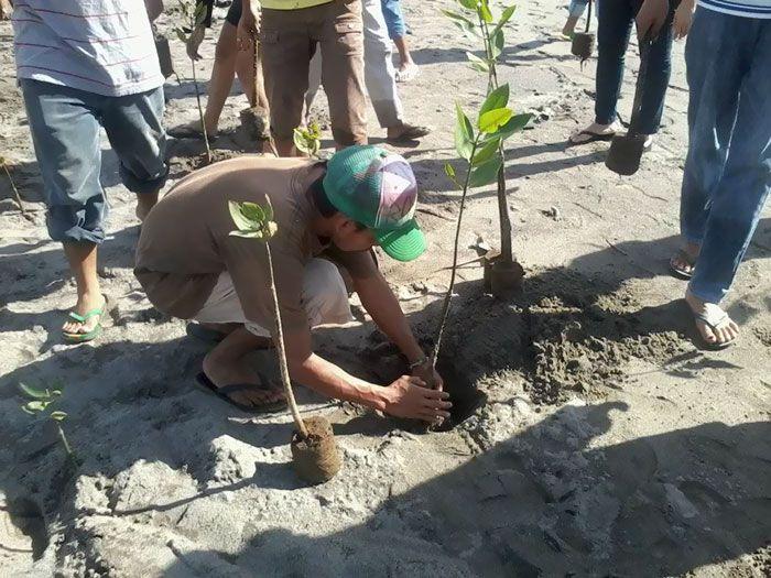 Mężczyzna sadzący drzewo