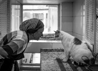 Kobieta patrząca na kota