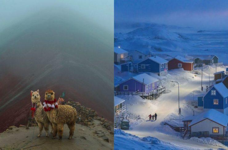 Dwie lamy i ośnieżona wioska