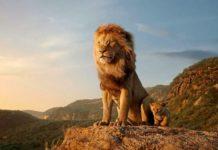 Duży i mały lew siedzący na skale