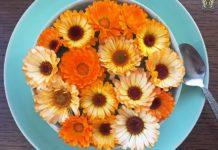 Kwiaty ułożone na talerzu