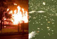 Pożar i woda z martwymi rybami