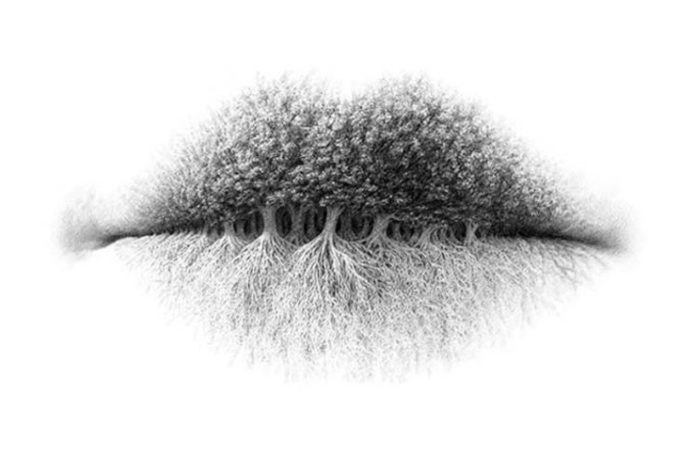 Obrazek przedstawiający iluzję optyczną