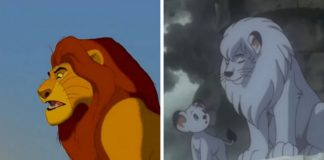 Porównanie dwóch klatek, duży oraz mały lew