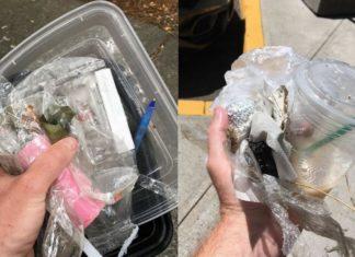 Dwa zdjęcia przedstawiające śmieci w dłoniach