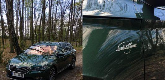 Samochód w lesie i znaczek na samodzie