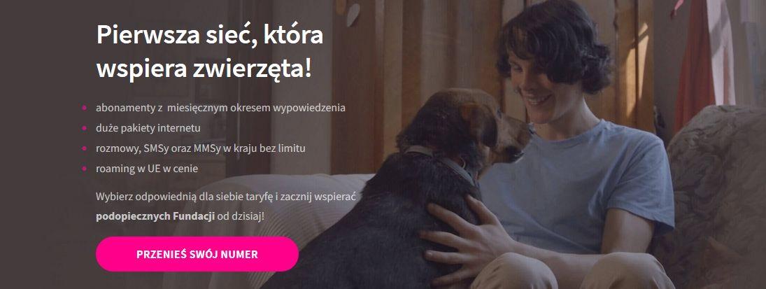 Zrzut ekranu ze strony Viva Mobile