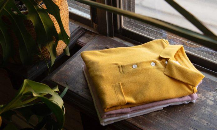 Koszule w różnych kolorach na półce, obok krzak w doniczce