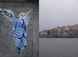 Widok na miasto położone nad morzem i mural z sową ze skrzydłami w garniturze