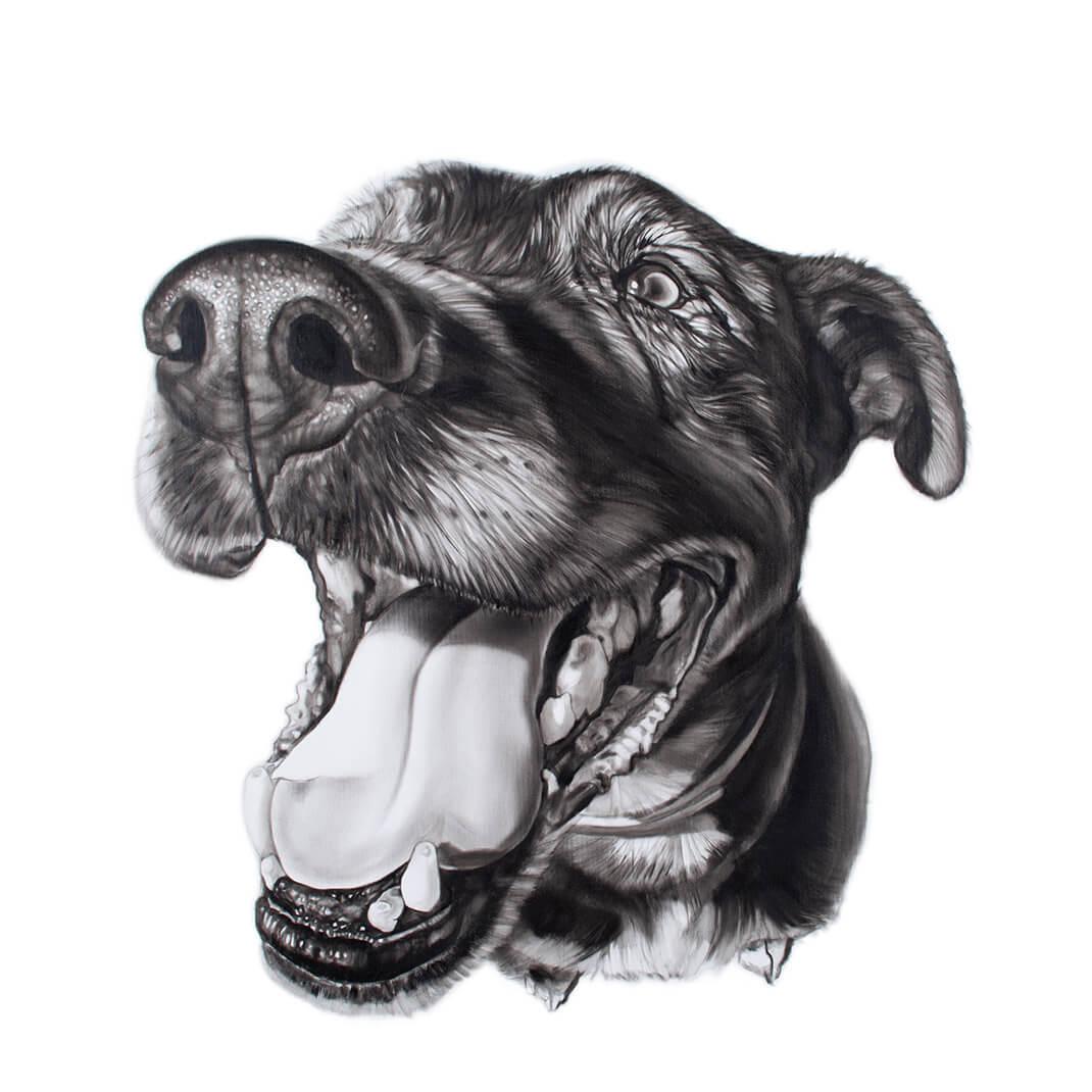 Michał Torzecki portret psa